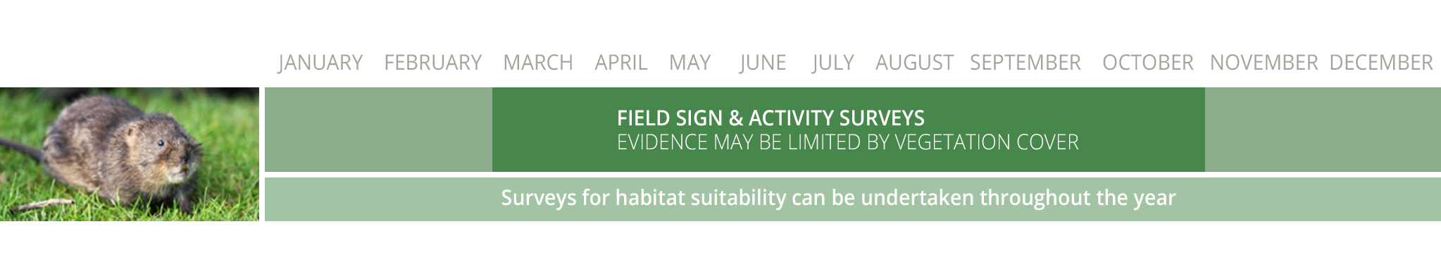 ecology survey calendar, protected species survey calendar
